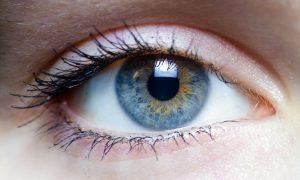 Silmä. (Kuvan silmä ei liity tutkimukseemme. Se on vain kaivettu jostain netistä.)